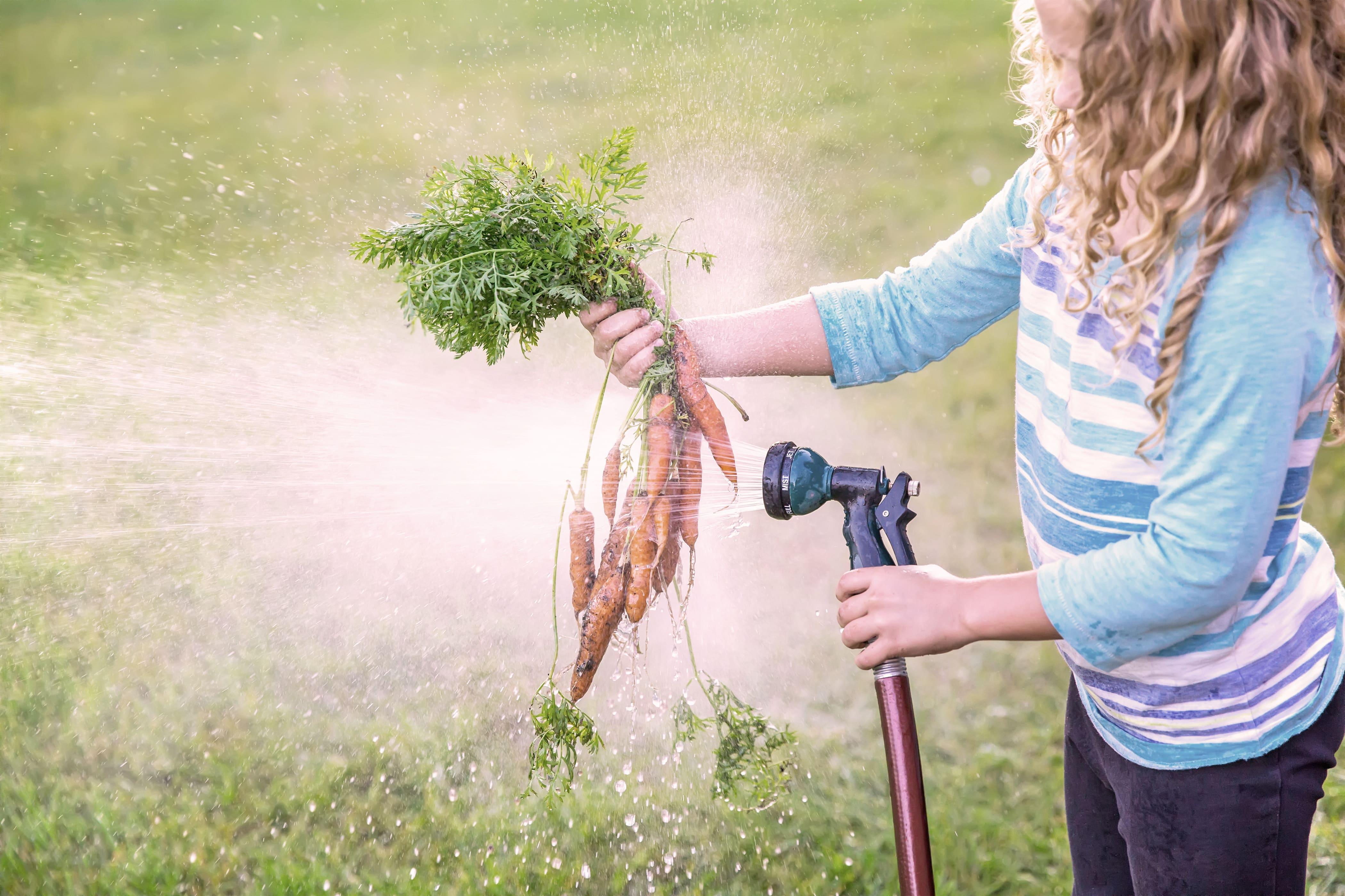 Wussten Sie…dass das meiste Wasser weltweit nicht im Haushalt verbraucht wird? Etwa 70% des Wassers verwendet die Landwirtschaft.